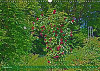Rosengarten auf dem Beutig (Wandkalender 2019 DIN A3 quer) - Produktdetailbild 2