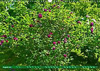 Rosengarten auf dem Beutig (Wandkalender 2019 DIN A3 quer) - Produktdetailbild 8