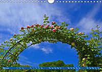 Rosengarten auf dem Beutig (Wandkalender 2019 DIN A4 quer) - Produktdetailbild 5