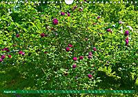 Rosengarten auf dem Beutig (Wandkalender 2019 DIN A4 quer) - Produktdetailbild 8