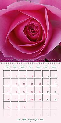 Roses Very Close (Wall Calendar 2019 300 × 300 mm Square) - Produktdetailbild 7