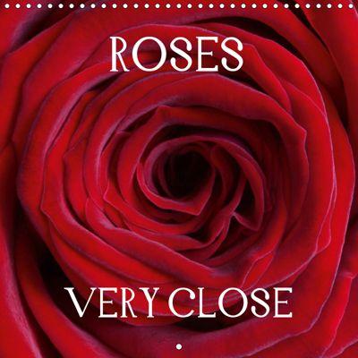 Roses Very Close (Wall Calendar 2019 300 × 300 mm Square), Gisela Kruse
