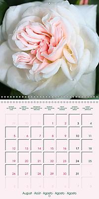 Roses Very Close (Wall Calendar 2019 300 × 300 mm Square) - Produktdetailbild 8