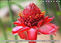 Rot im Blick (Tischkalender 2019 DIN A5 quer) - Produktdetailbild 12