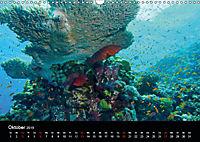 Rotes Meer - Ägyptens Süden (Wandkalender 2019 DIN A3 quer) - Produktdetailbild 10
