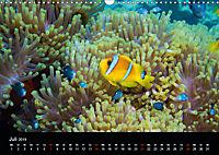 Rotes Meer - Ägyptens Süden (Wandkalender 2019 DIN A3 quer) - Produktdetailbild 7