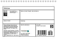 Rotfüchse (Tischkalender 2019 DIN A5 quer) - Produktdetailbild 10