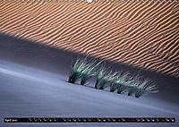 RUB AL-KHALI - Faszination Sandwüste (Wandkalender 2019 DIN A2 quer) - Produktdetailbild 4