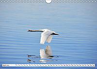 Ruhe und Mitte finden (Wandkalender 2019 DIN A4 quer) - Produktdetailbild 4