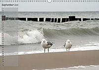 Rund um Kühlungsborn (Wandkalender 2019 DIN A3 quer) - Produktdetailbild 9
