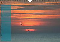 Rund um Kühlungsborn (Wandkalender 2019 DIN A4 quer) - Produktdetailbild 7