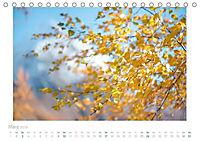 saas fee (Tischkalender 2019 DIN A5 quer) - Produktdetailbild 3