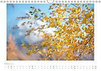 saas fee (Wandkalender 2019 DIN A4 quer) - Produktdetailbild 3