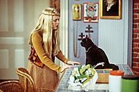 Sabrina - Total verhext! - Die komplette Staffel 3 - Produktdetailbild 6