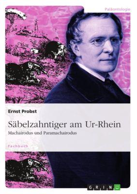 Säbelzahntiger am Ur-Rhein, Ernst Probst