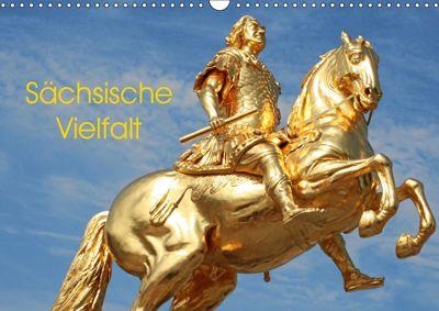 Sächsische Vielfalt (Wandkalender 2019 DIN A3 quer), André Bujara