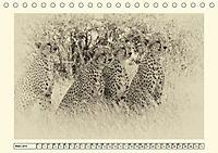 Safari - auf Katzensuche (Tischkalender 2019 DIN A5 quer) - Produktdetailbild 3
