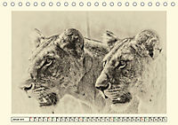 Safari - auf Katzensuche (Tischkalender 2019 DIN A5 quer) - Produktdetailbild 1