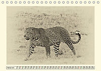 Safari - auf Katzensuche (Tischkalender 2019 DIN A5 quer) - Produktdetailbild 2