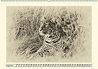 Safari - auf Katzensuche (Wandkalender 2019 DIN A2 quer) - Produktdetailbild 8
