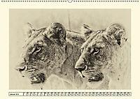 Safari - auf Katzensuche (Wandkalender 2019 DIN A2 quer) - Produktdetailbild 1