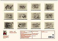 Safari - auf Katzensuche (Wandkalender 2019 DIN A2 quer) - Produktdetailbild 13