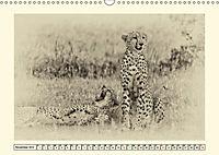 Safari - auf Katzensuche (Wandkalender 2019 DIN A3 quer) - Produktdetailbild 11