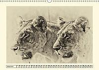 Safari - auf Katzensuche (Wandkalender 2019 DIN A3 quer) - Produktdetailbild 1