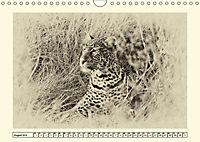 Safari - auf Katzensuche (Wandkalender 2019 DIN A4 quer) - Produktdetailbild 8