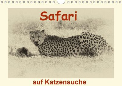 Safari - auf Katzensuche (Wandkalender 2019 DIN A4 quer), Susan Michel /CH