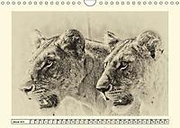 Safari - auf Katzensuche (Wandkalender 2019 DIN A4 quer) - Produktdetailbild 1