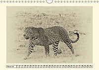 Safari - auf Katzensuche (Wandkalender 2019 DIN A4 quer) - Produktdetailbild 2