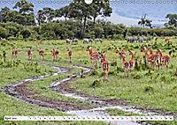 Safari Nijema - Unterwegs in der Masai Mara (Wandkalender 2019 DIN A3 quer) - Produktdetailbild 4