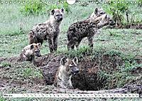 Safari Nijema - Unterwegs in der Masai Mara (Wandkalender 2019 DIN A4 quer) - Produktdetailbild 5