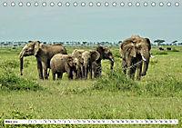 Safari Nijema - Unterwegs in der Masai Mara (Tischkalender 2019 DIN A5 quer) - Produktdetailbild 3