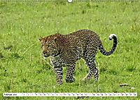 Safari Nijema - Unterwegs in der Masai Mara (Wandkalender 2019 DIN A2 quer) - Produktdetailbild 2