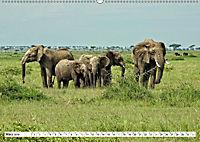 Safari Nijema - Unterwegs in der Masai Mara (Wandkalender 2019 DIN A2 quer) - Produktdetailbild 3