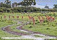 Safari Nijema - Unterwegs in der Masai Mara (Tischkalender 2019 DIN A5 quer) - Produktdetailbild 4