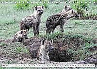 Safari Nijema - Unterwegs in der Masai Mara (Tischkalender 2019 DIN A5 quer) - Produktdetailbild 5