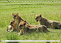 Safari Nijema - Unterwegs in der Masai Mara (Tischkalender 2019 DIN A5 quer) - Produktdetailbild 7