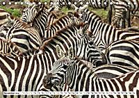 Safari Nijema - Unterwegs in der Masai Mara (Tischkalender 2019 DIN A5 quer) - Produktdetailbild 11