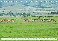 Safari Nijema - Unterwegs in der Masai Mara (Tischkalender 2019 DIN A5 quer) - Produktdetailbild 9