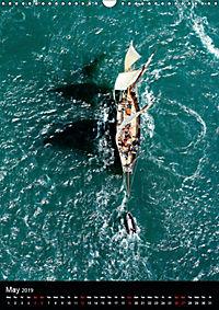Sailboats seen from the air (Wall Calendar 2019 DIN A3 Portrait) - Produktdetailbild 5