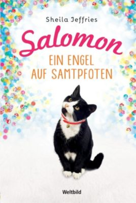 Salomon. Ein Engel auf Samtpfoten, Sheila Jeffries