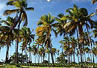 Samana - Palmen und Strände (Wandkalender 2019 DIN A2 quer) - Produktdetailbild 3