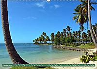 Samana - Palmen und Strände (Wandkalender 2019 DIN A2 quer) - Produktdetailbild 10