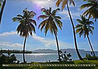 Samana - Palmen und Strände (Wandkalender 2019 DIN A2 quer) - Produktdetailbild 5