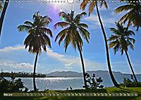 Samana - Palmen und Strände (Wandkalender 2019 DIN A3 quer) - Produktdetailbild 5