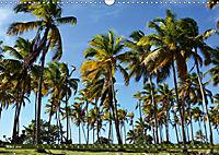 Samana - Palmen und Strände (Wandkalender 2019 DIN A3 quer) - Produktdetailbild 3