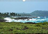 Samana - Palmen und Strände (Wandkalender 2019 DIN A4 quer) - Produktdetailbild 7